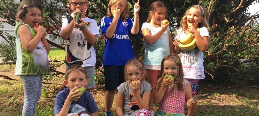 Unterstützen Sie mit einer Spende für Obst &Gemüse!